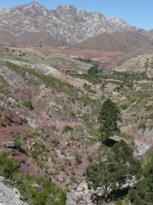 546-paysage-jalqa-224x300