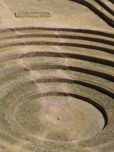 646-Moray-harmonie-des-courbes-harmonie-avec-la-Nature-225x300